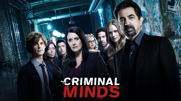 Criminal minds season finale 2019
